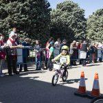 Contador 2241 150x150 - Piccolinos Solidarios