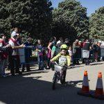 Contador 2251 150x150 - Piccolinos Solidarios
