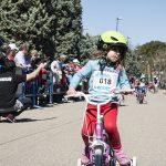 Contador 2261 150x150 - Piccolinos Solidarios