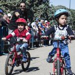 Contador 2281 150x150 - Piccolinos Solidarios