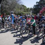 Contador 247 150x150 - Piccolinos Solidarios