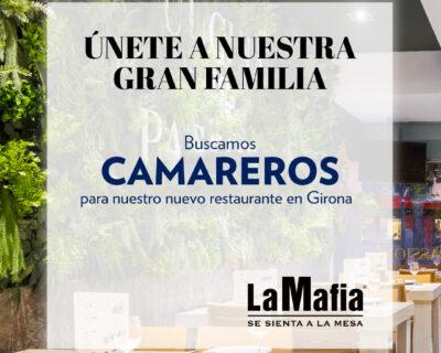 BUSCAMOS camareros en Girona 400x320 - GIRONA - Camareros en 'La Mafia se sienta a la mesa'