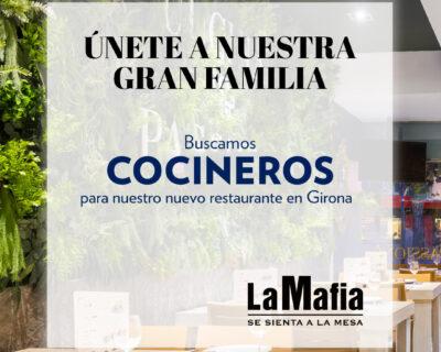 BUSCAMOS cocineros en Girona 400x320 - GIRONA - Cocineros en 'La Mafia se sienta a la mesa'
