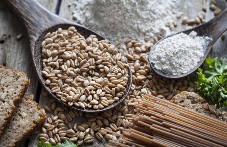 Fettuccine de espelta platos sabrosos y saludables 1 - Fettuccine de espelta, platos sabrosos y saludables