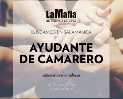 """BUSCAMOS Equipo Salamanca Ayudante camarero 400x320 - SALAMANCA - Ayudante de camarero en """"La mafia se sienta a la mesa"""""""